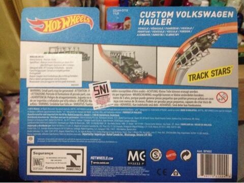 Custom Volkswagen Hauler