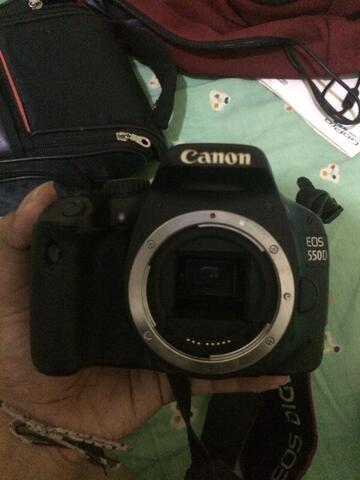 kamera slr canon eos 550d body only murah