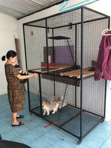 Terjual Jual Kandang Kucing Anjing Musang Jogja Kaskus