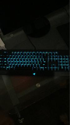 WTS Razer Blackwidow Chroma