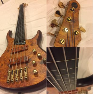 bass mtd kingstom kz5 fretless