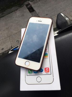 iPhone 5S Gold 16Gb Murah Apa Adanya