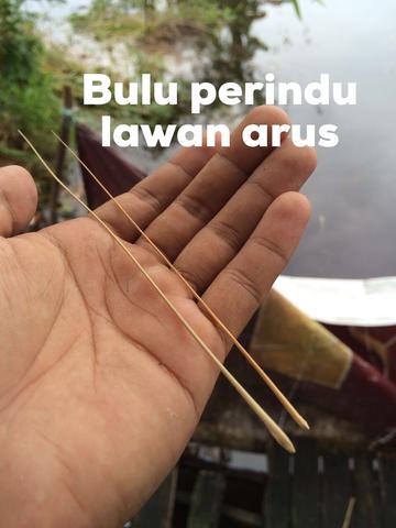 Buluh Perindu Kalimantan