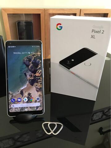 Google pixel xl 2 panda bandung