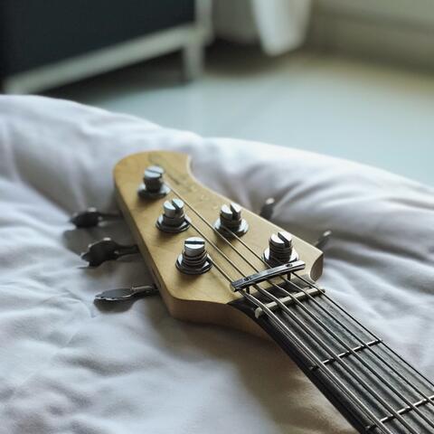 Lakland Bass V strings ( not fender Gnl Musicman Jazz Bass )