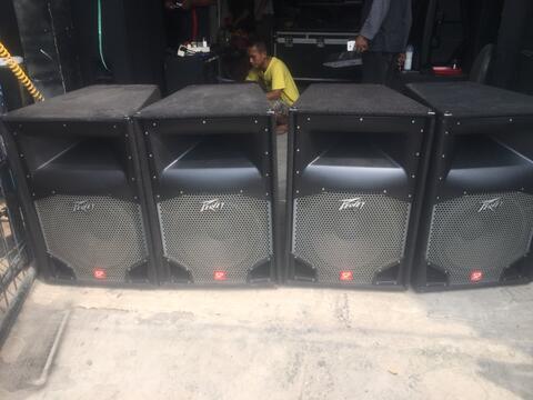 speaker pasip peavey sp2 usa