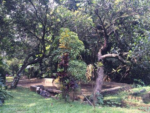 Villa Kebun & Empang di Cikeas Bogor