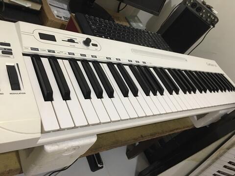 Samson carbon 61 keys
