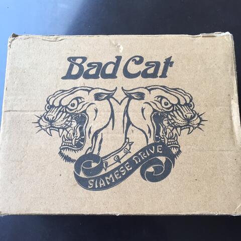 Bad Cat Siamesse Overdrive not boss mxr joyo mooer nux strymon behringer jhs suhr