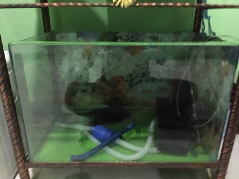 Aquarium 60x40x40. Satu Set Lengkap. Ada Retak Di Bagian Bawah Sudut.