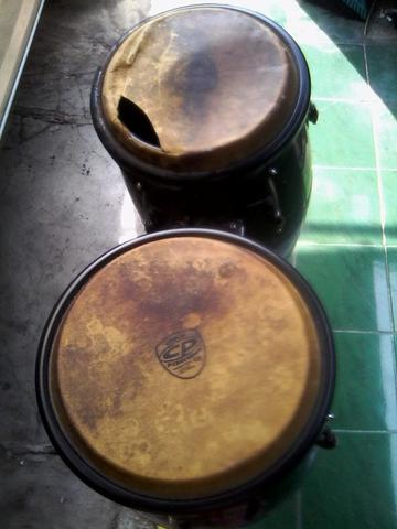 Congas merk Cp by Lp