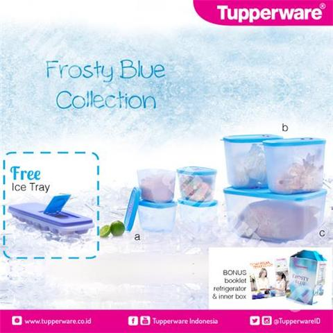TUPPERWARE FROSTY BLUE COLLECTION MURMER ^.^