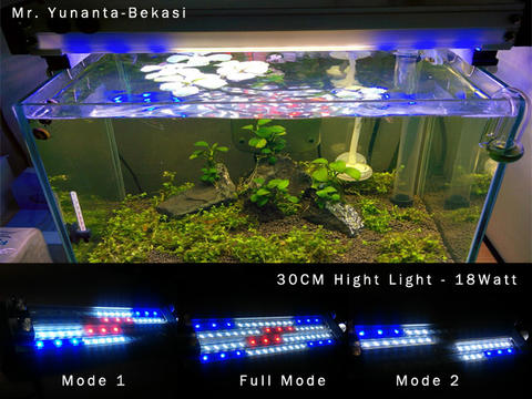 Led 8xnopkwn0 Lampuaquarium Aquascapekere Hore Diy Lamp 35LqRAj4