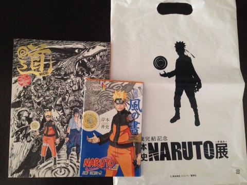 Official Naruto Illustration Guide Book Limited edition