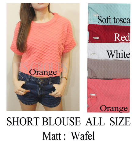 Short Blouse Ladies
