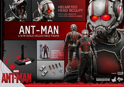WTS hot toys antman