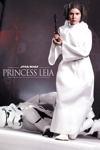 Hot Toys Princess Leia Star Wars Special - RARE MISB New Sale 1/6 HotToys HT