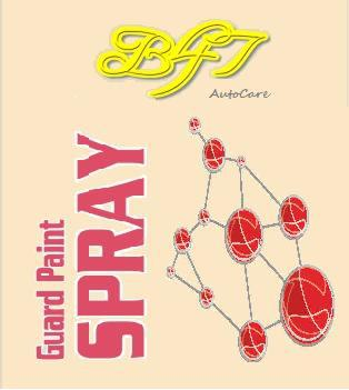 B47 AutoCare Guard Paint Spray - Spray wax, Spray sealant