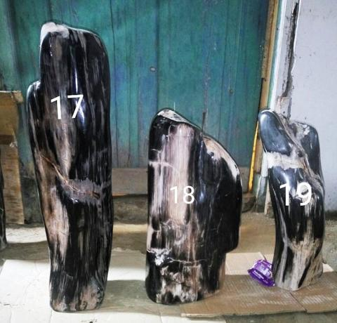 Collection petrified wood - koleksi batu kayu fosil #CLP6