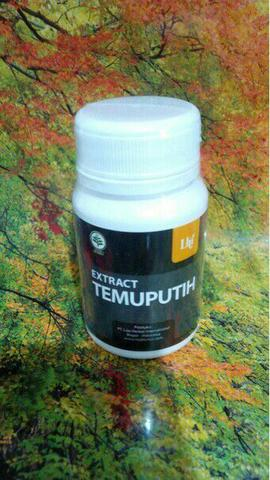 kapsul Herbal extract TEMUPUTIH
