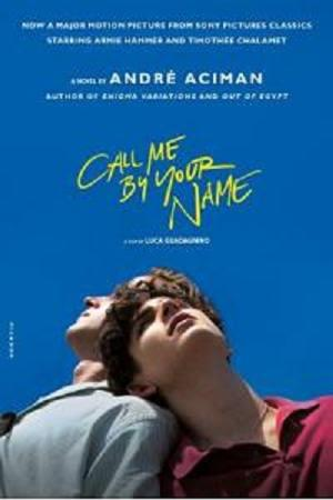 Buku Novel Impor Call Me By Your Name