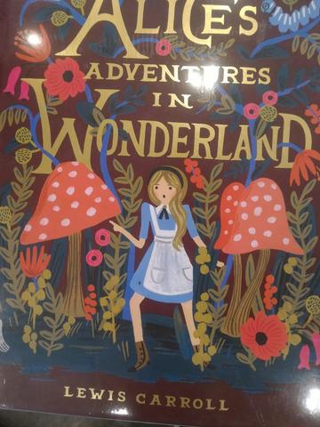 Alice in Wonderland illustrated book Hardcover