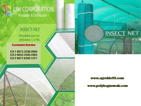 Supplier Insecnet Serangga Warna Hijau 081232584950