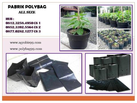 Supplier Plastik Kantong Polybag Tanaman All Size