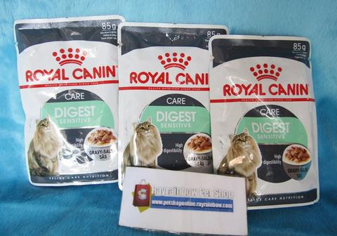 Royal Canin Digest Care - Makanan Kucing