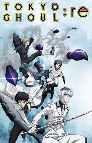 DVD Tokyo Ghoul:re Anime