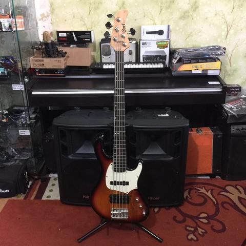 ***BILLY MUSIK*** Bass Cort GB Series GB35A GB-35A 5 Strings Active