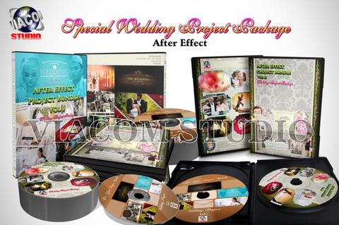 Template Project Special Wedding For After Effect