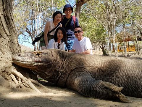 Komodo Adventure 2D/1N