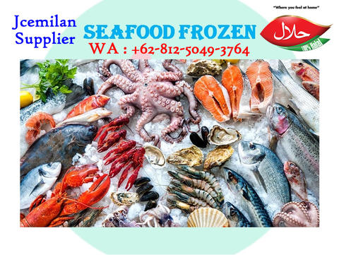 SUPPLIER FROZEN FOOD SALMON STEAK PREMIUM 500 GRAM JAKARTA