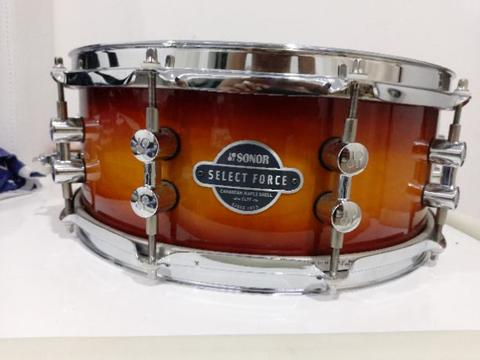 Sonor Canadian Maple Shell
