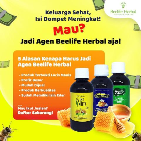 Agen dan Reseller Madu Beelife Herbal Indonesia