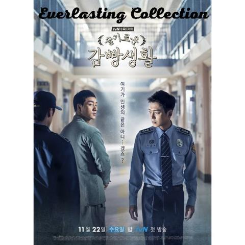 DVD Drama Korea Prison Playbook Korean Movie Film Kaset Romance Park Hae Soo