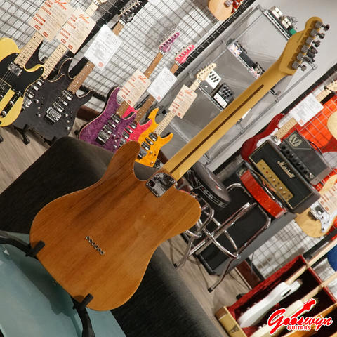 BRAND NEW FENDER AMERICAN PROFESSIONAL II TELECASTER ROASTED PINE MADE IN USA
