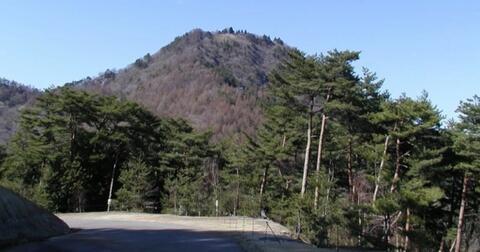 inikah-penyebab-hutan-aokigahara-menjadi-tempat-favorit-untuk-mengakhiri-hidup