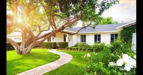 begini-enaknya-ada-pohon-di-halaman-depan-rumah