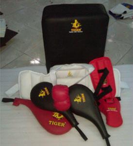 Terjual Jual Peralatan Beladiri Tae Kwon Do, Karate