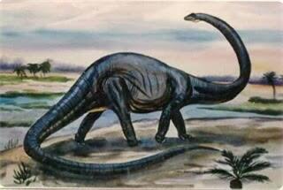 75+ Gambar Macam2 Dinosaurus Kekinian