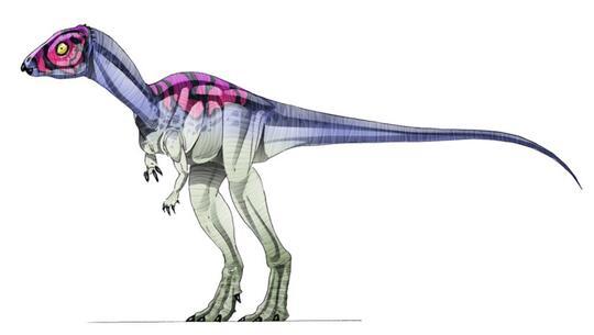 25 Jenis Dinosaurus Dan Keunikannya Kaskus