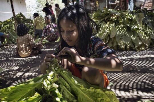 9 Berita dari Indonesia yang Masuk Media di Luar Negeri Tahun 2016