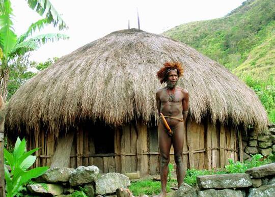 620 Rumah Adat Papua Dan Gambarnya Terbaik