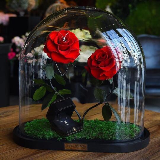 "Bunga Mawar di ""Beauty and The Beast"" Ternyata Benar Ada dan Tahan Selama 3 Tahun"