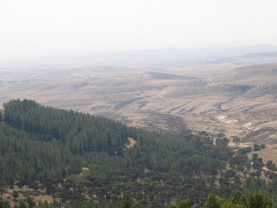 Cara Israel Menanam Tanaman Pertanian di Lahan Super Kekeringan dan Tandus