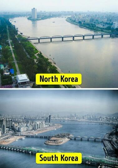 Potret Kehidupan Di Korea Setelah Terpisahkan