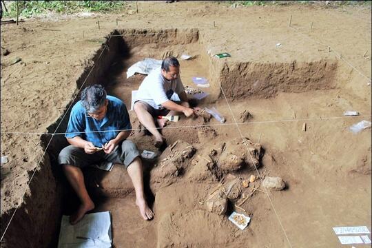 Sejarah Penemuan Dan Penelitian Manusia Purba Di Indonesia Kaskus