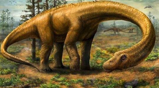 7 Misteri Dinosaurus Yang Belum Ada Jawabannya